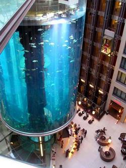 Самый большой аквариум в мире. Аквариум в Атланте. Джорджия. США.